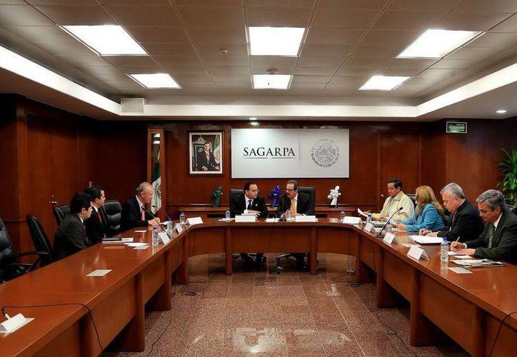 El gobernador, Roberto Borge Angulo, se reunió con el secretario de Agricultura, Ganadería, Desarrollo Rural Pesca y Alimentación (Sagarpa), Enrique Martínez y Martínez. (Redacción/SIPSE)