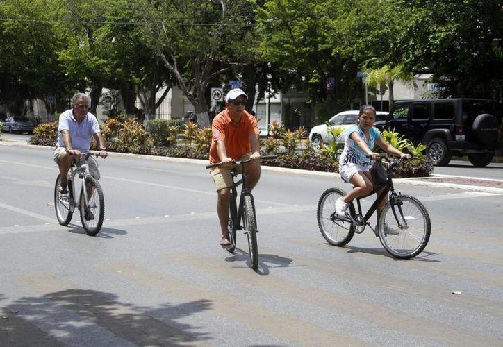 Al manejar una bicicleta nunca hay que dar por hecho que el conductor de un automóvil lo ha visto. (Milenio Novedades)