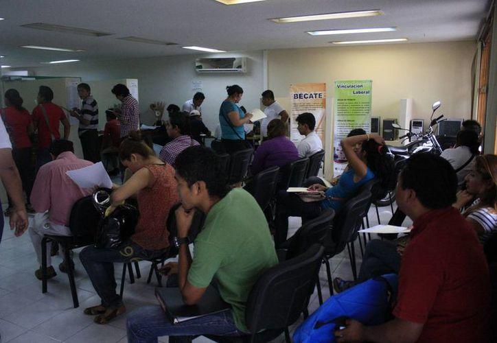 El programa de becas busca generar el autoempleo en las personas a través de la capacitación. (Harold Alcocer/SIPSE)