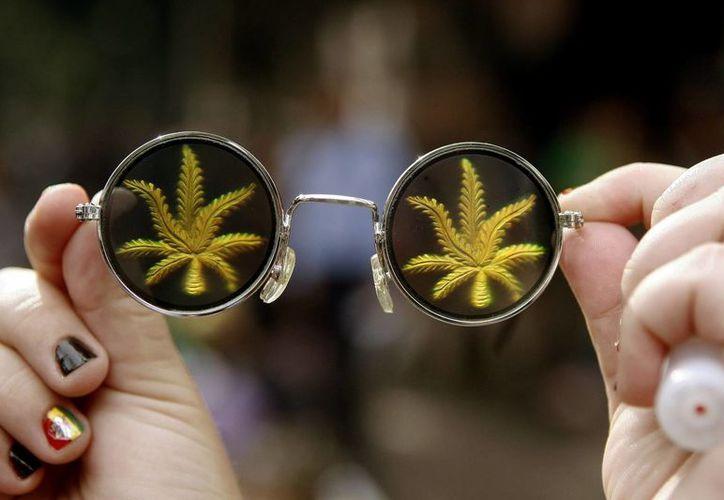 Las opiniones de la comunidad científica sobre las propiedades terapéuticas de la marihuana están divididas, pero popularmente se ha utilizado desde tiempos inmemoriales para tratar algunas enfermedades y calmar dolores. (EFE)