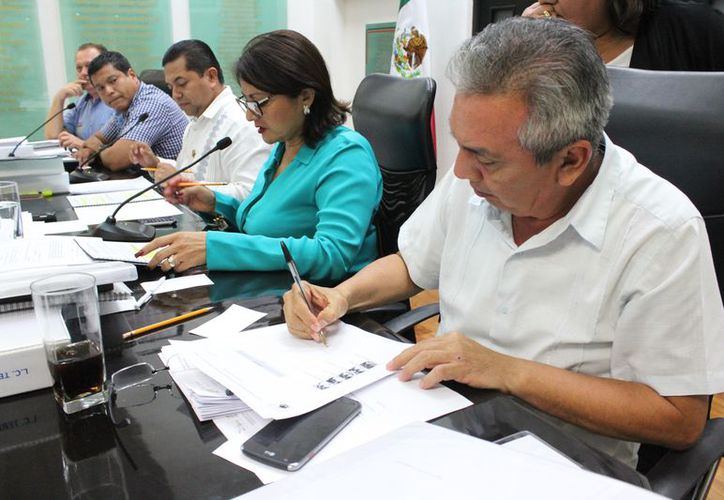 Para tomar una decisión, los diputados de la Comisión podrán consultar a las organizaciones de la sociedad civil y académicas. (Joel Zamora/SIPE)