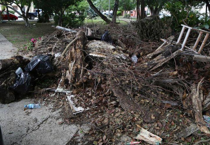 La gente sigue utilizando los parques como basureros y no hacen por conservarlos limpios. (Luis Soto/SIPSE)