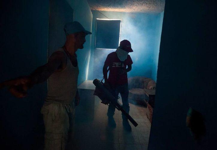 China confirma su segundo caso de zika, éste contraído en Venezuela. Un trabajador de la Alcaldía de Libertador de Caracas realiza trabajos de fumigación. (EFE)