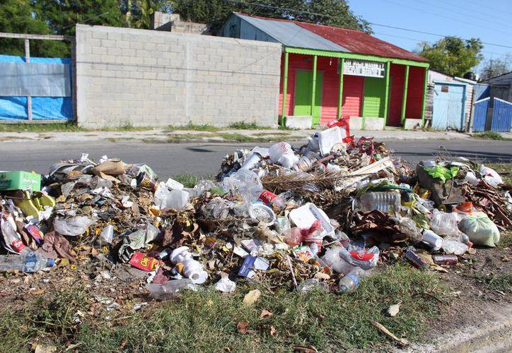 Las personas ignoran la prohibición de tirar los desperdicios en la vía pública. (Joel Zamora/SIPSE)