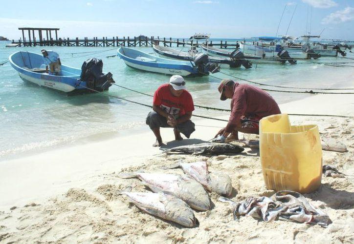 La pesca en el norte del estado es más furtiva que en el sur. (Alida Martínez/SIPSE)