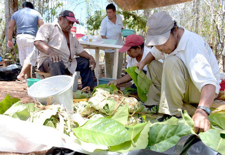 Estuvo a cargo por los ejidatarios de Tepich y Tihosuco para pedir por mejores lluvias para los cultivos de este año. (Foto: Redacción / SIPSE)