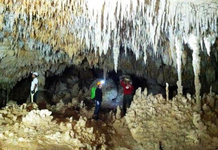 El  Círculo Espeleológico del Mayab realiza investigaciones en zonas de Cozumel y Campeche. (Archivo/SIPSE)