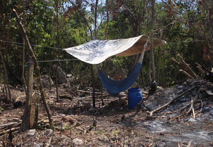 En una fracción de terreno, los colonos montan una choza e inician una nueva vida. (Harold Alcocer/SIPSE)