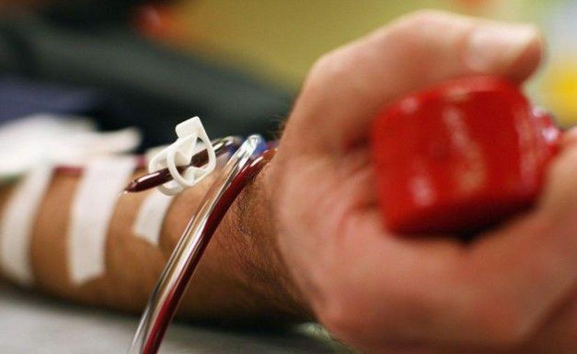 Realizó mil 100 donaciones de sangre para los pequeños. (Internet)