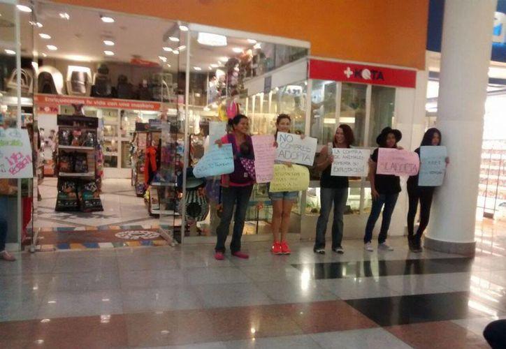Los manifestantes expresaron su rechazo con pancartas. (Alejandra Galicia/SIPSE)