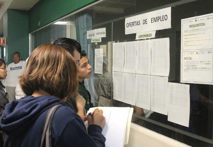 La STPS reportó que de cada 10 personas que solicitaron ayuda a través de su bolsa de trabajo, sólo 2.5 lograron ser colocados en algún empleo. (Hugo Zúñiga/SIPSE)