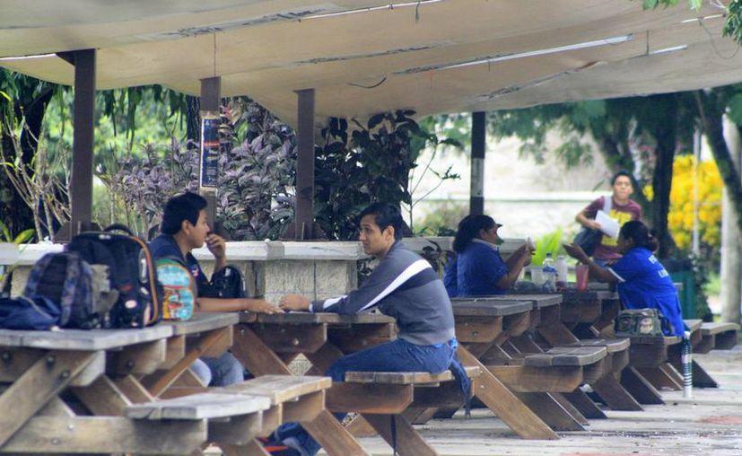 El Cenei de la Uqroo arrancó en el año 2003, con 109 estudiantes provenientes de la zona maya. (Harold Alcocer/SIPSE)