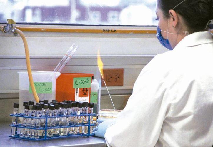 El laboratorio resguarda  el resultado de los análisis, los cuales permiten al Estado mantenerse en alerta y aplicar políticas públicas en beneficio de la salud de la población. (Milenio Novedades)