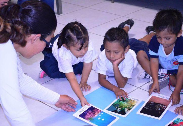 """El destacado programa lo realizan bajo la metodología """"aprender haciendo"""". (Redacción/SIPSE)"""