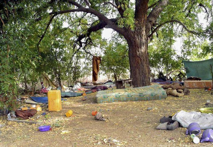 Imagen de un campamento abandonado de Boko Haram en Buni Yadi después de que las tropas nigerianas recuperaran la zona de Gujba en Yobe, noreste de Nigeria. (EFE/Archivo)