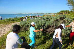 Playa del Carmen vuelve a romper récord en limpieza de playas