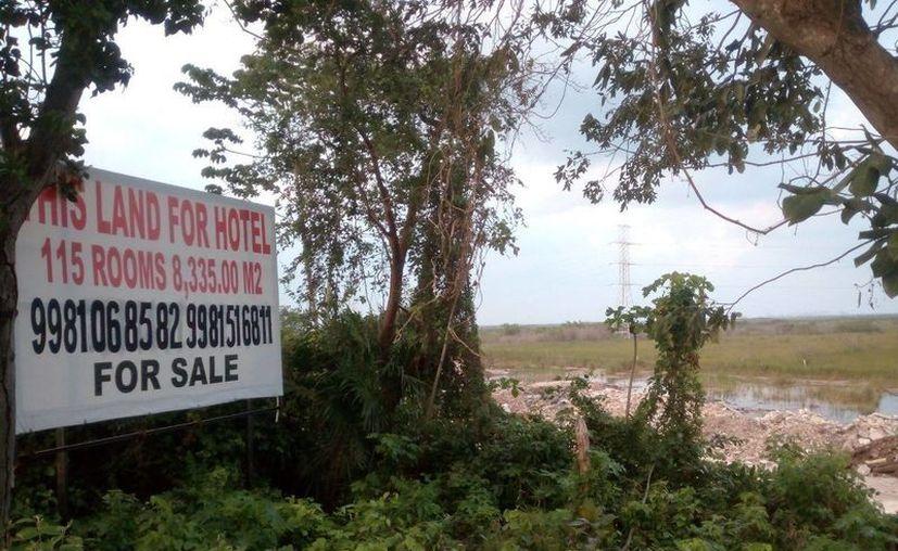 En las inmediaciones del predio se veía un letrero que decía que en ese lugar se construirá un hotel. (Eric Galindo/SIPSE)