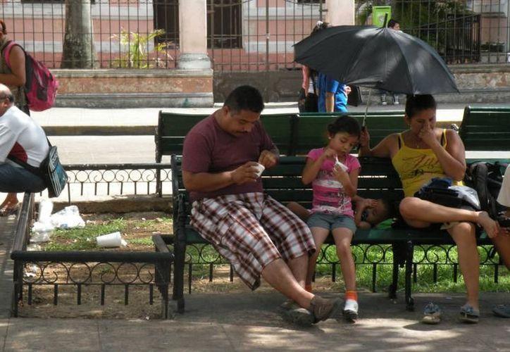 Ayer, la temperatura máxima registrada en Mérida fue de 40 grados. (Archivo/ Milenio Novedades)