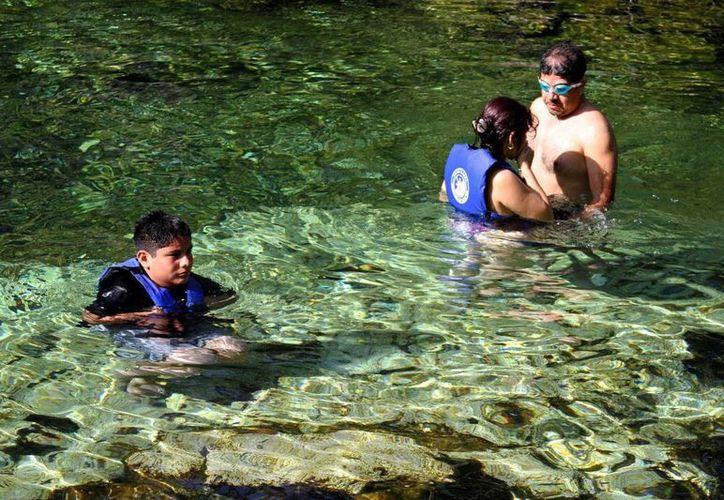 Según estudios de la Conagua, 70% de los cenotes y cuerpos de agua del Estado están saneados. (Daniel Pacheco/SIPSE)