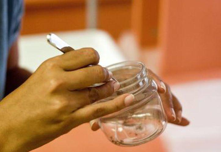 Los estudios permitirán dirigir con mayor precisión las acciones que se realizan para el control del dengue. (Harold Alcocer/SIPSE)