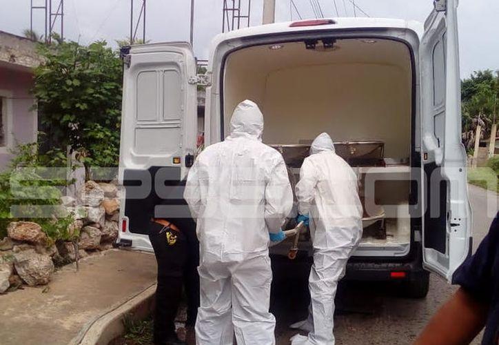 Personal del Ministerio Público y Servicios Periciales de la FGE, con base en Ticul, se presentó para efectuar el levantamiento del cadáver. (SIPSE)