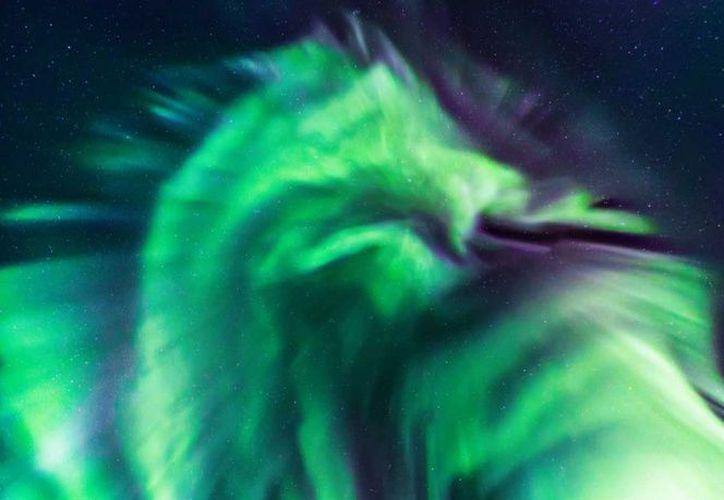 En la imagen se puede apreciar la silueta de una criatura mitológica con una cabeza y alas bien definidas. (Internet)