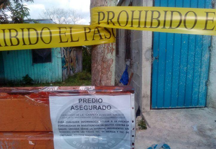 Este fue el segundo cateo de la Feads en la zona rural de Othón P. Blanco. (Redacción/SIPSE)