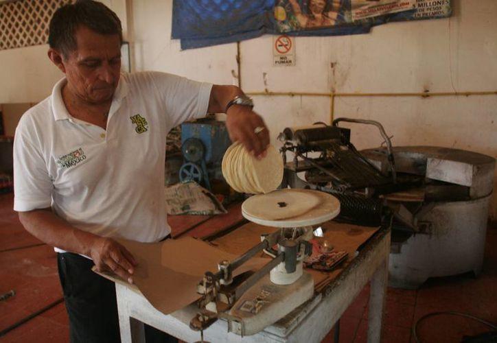 El 10 por ciento de la producción de tortilla en la capital del estado no logra ser comercializada, debido a la sobreoferta. (Harold Alcocer/SIPSE)