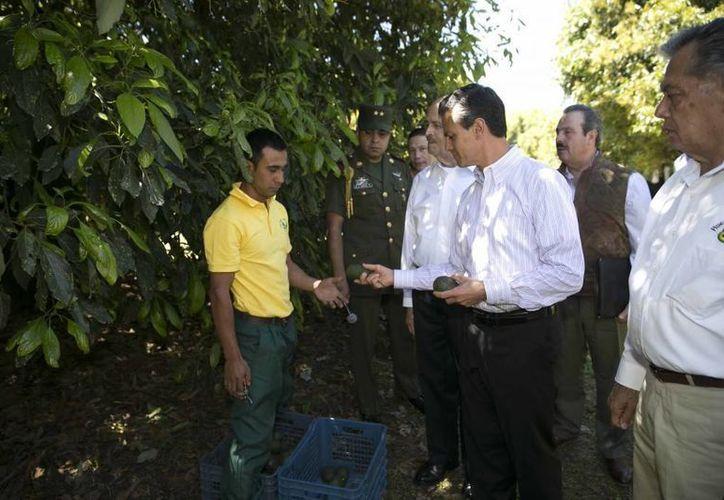 Peña Nieto afirmó que Michoacán es una prioridad para su gobierno. (Presidencia)