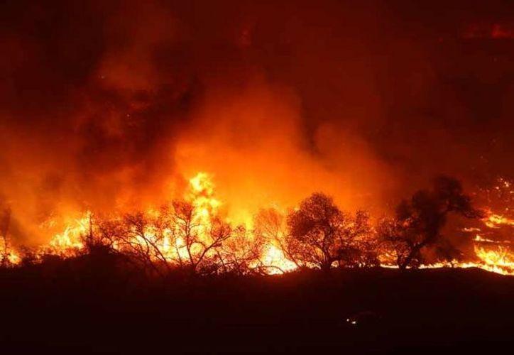 Los incendios que han amenazado a los condados de California, han dejado al meno un muerto. (Foto: Excélsior)