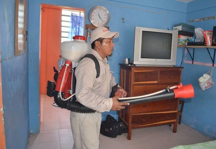 Durante la lucha contra el dengue se han visitado un millón 185 mil casas, en lo que va del año. (Redacción/SIPSE)