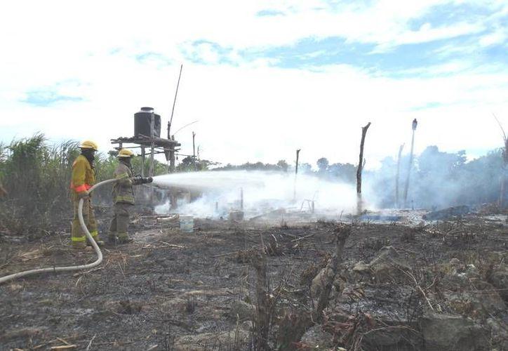 Este es el sexto año que Cozumel pasa la temporada de incendios forestales con cero incidentes de este tipo.  (Redacción/SIPSE)