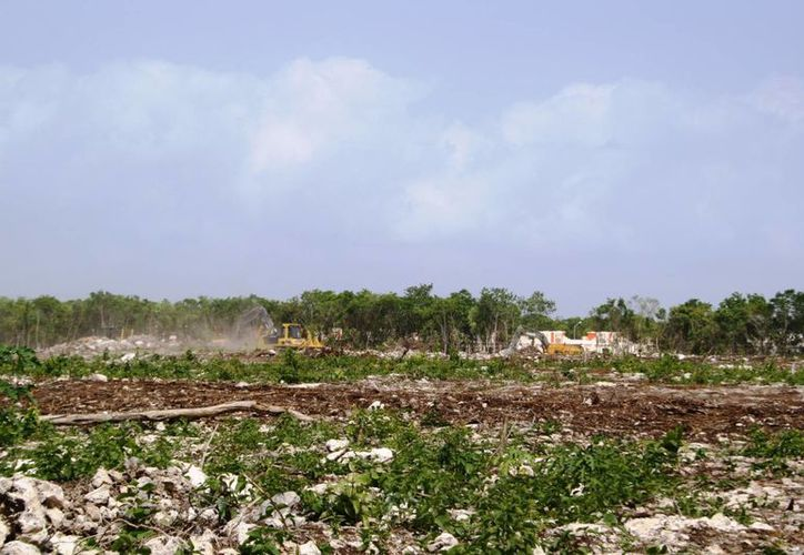 """El reglamento de construcción permite la devastación ecológica, el entrevistado los considera """"ecocidios legalmente permitidos"""". (Octavio Martínez/SIPSE)"""