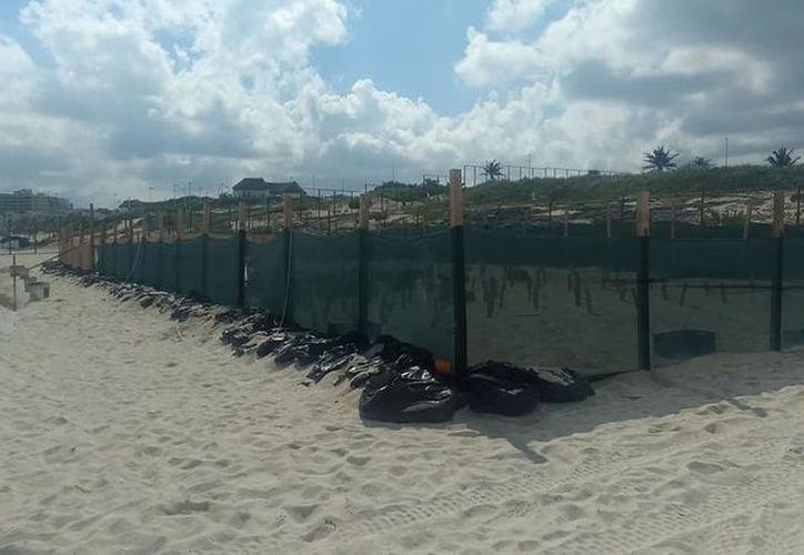 La activista compartió fotografías de los trabajos de un complejo hotelero en playa Delfines. (Facebook)