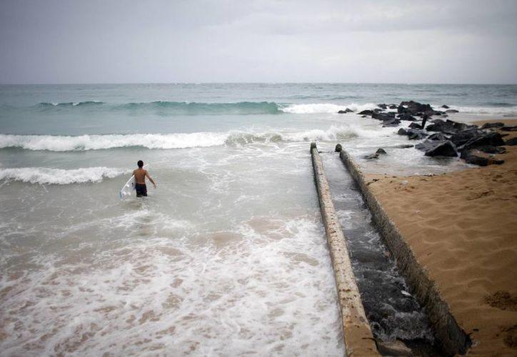 Un surfista desafía el oleaje en una playa de Puerto Rico, donde la tormenta Bertha dejó copiosas lluvias. (Foto: AP)