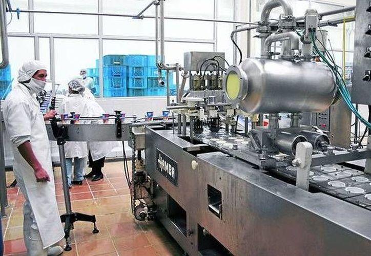 La manufacturera es la industria más importante en la entidad. (Archivo/ Milenio Novedades)