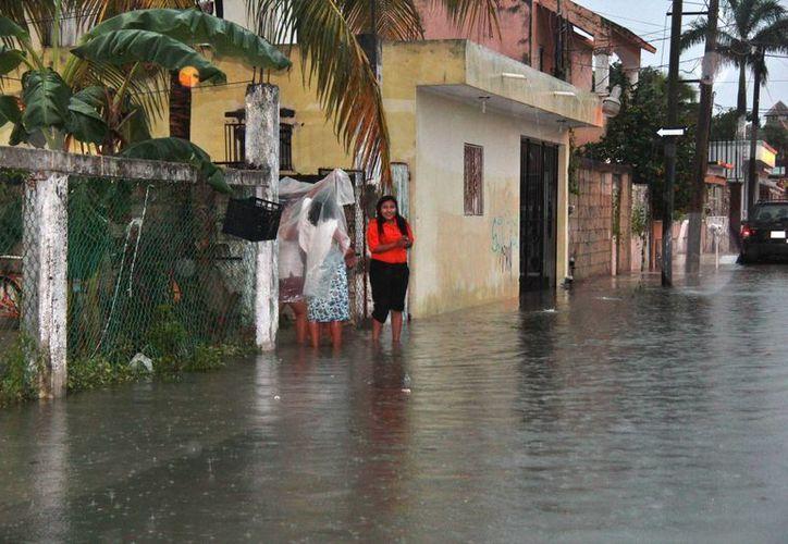 Al menos nueve colonias sufrieron por inundaciones en sus calles.  (Gustavo Villegas/SIPSE)