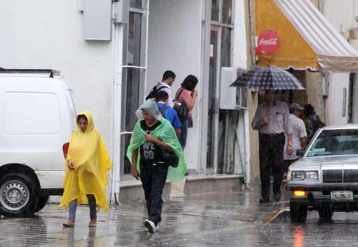 Las lluvias se hicieron presentes la tarde de ayer en Mérida. (SIPSE)