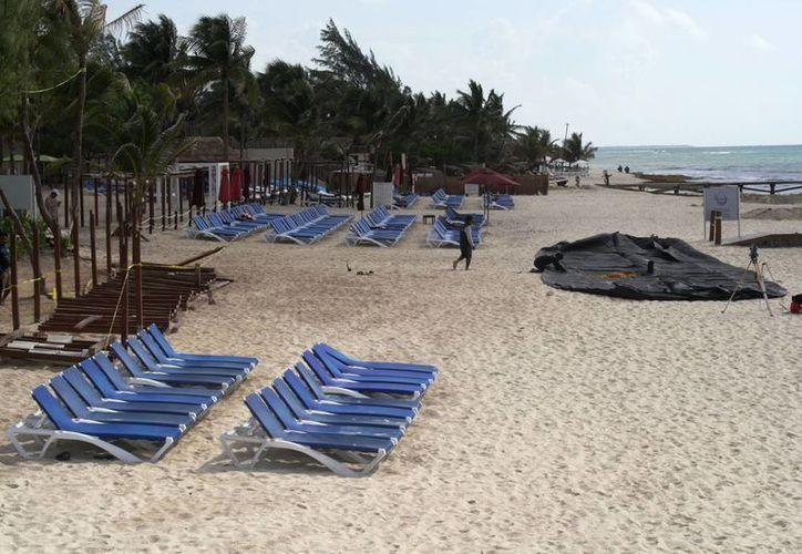 El director de la Zofemat sugiere que se grabe a quienes impidan instalarse en los arenales de Playa del Carmen. (Octavio Martínez/SIPSE)