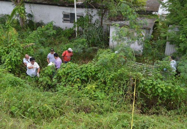 Cerca de una casa, ubicada sobre la carretera federal, se halló un cuerpo en estado de putrefacción. (Redacción/SIPSE)