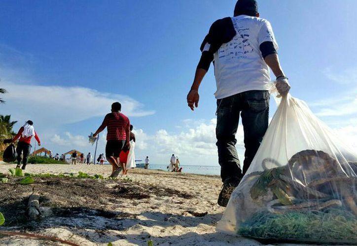 La limpieza de playas continuará el día de hoy en las playas Langosta y Tortugas de Cancún. (Jesús Tijerina/SIPSE)