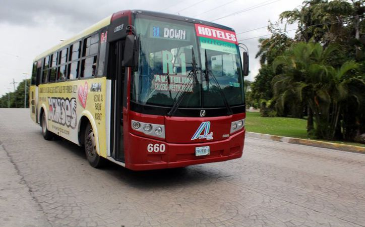 Autocar adquirió 42 camiones y en breve tendrá más. (Luis Soto/SIPSE)