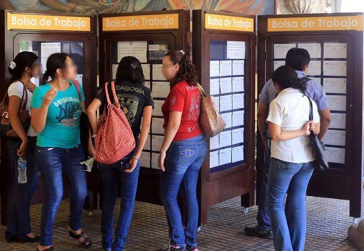 El PAN de Yucatán propone reducir la edad legal para trabajar de 18 a 15 años. (Milenio Novedades)