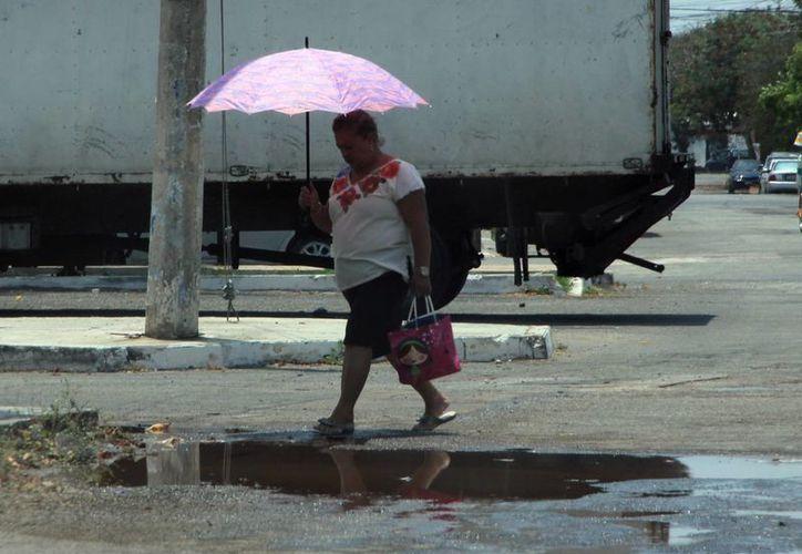 Se prolonga la racha de temperaturas superiores a 40 grados en Mérida. (José Acosta/SIPSE)