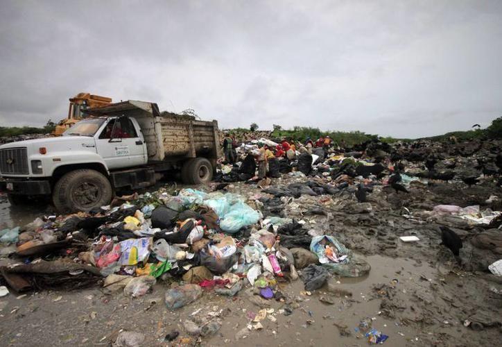 En Tulum, los encargados de la recolección de basura no cumplían con los lineamientos. (Redacción)