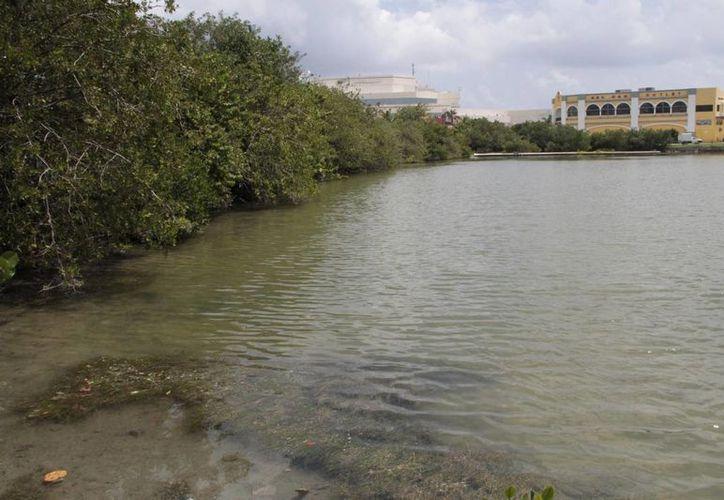 La obra ocuparía una dimensión de cinco mil 83 metros cuadrados en la Laguna Nichupté. (Israel Leal/SIPSE)