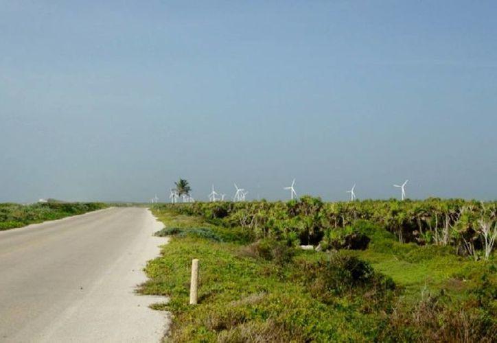 Imagen del proyecto de las torres eólicas que serían instaladas en la zona oriente de la isla. (Redacción/SIPSE)