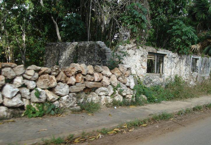 Parte de una barda colocada que fue colocada por los primeros pobladores en lo que hoy es la colonia Dolores. (Carlos Yabur/SIPSE)