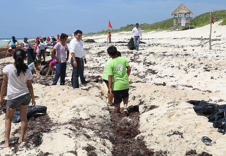 El programa temporal tiene como objetivo que las playas de Cozumel recobren su belleza ante la llegada del sargazo. (Redacción/SIPSE)