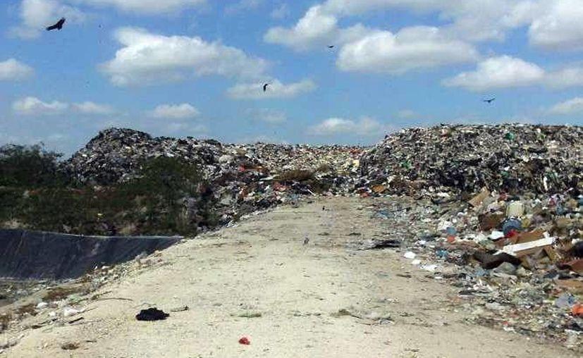 En las temporadas vacacionales la generación de basura aumenta por la llegada de paseantes. (Milenio Novedades)